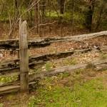 cedar-rail2