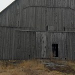 grey-barn-board10