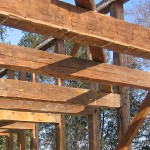 settlers-wood1