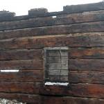 settlers-wood5