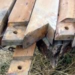 vintage-rafters11
